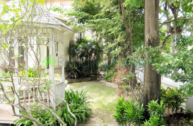 Bangna-Srinakarin, Bangkok, Thailand, 3 Bedrooms Bedrooms, ,3 BathroomsBathrooms,House,For Rent,4390