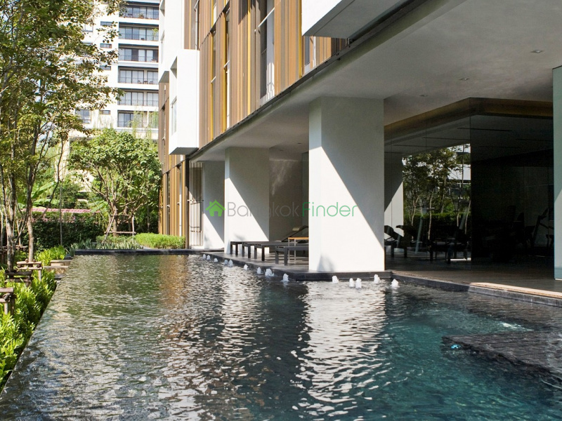 31 Sukhumvit, Asoke, Bangkok, Thailand, 1 Bedroom Bedrooms, ,1 BathroomBathrooms,Condo,For Rent,Via,Sukhumvit,4910