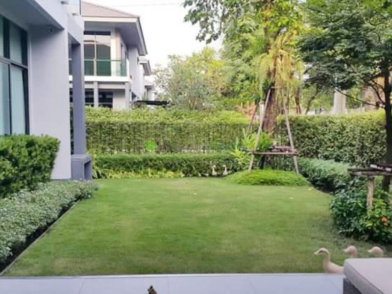 Pattanakarn, Bangkok, Thailand, 4 Bedrooms Bedrooms, ,4 BathroomsBathrooms,House,For Rent,6727
