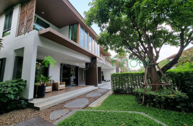 Pattanakarn, Bangkok, Thailand, 4 Bedrooms Bedrooms, ,5 BathroomsBathrooms,House,For Rent,6920