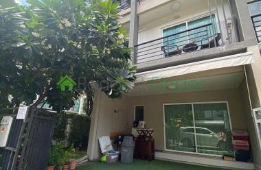 Sukhumvit 77, Bangkok, Thailand, 3 Bedrooms Bedrooms, ,3 BathroomsBathrooms,Town House,For Rent,6971